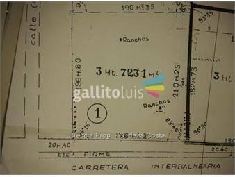 https://www.gallito.com.uy/chacra-3-hect-7231-mts-la-mejor-ubicacion-inmuebles-17911738