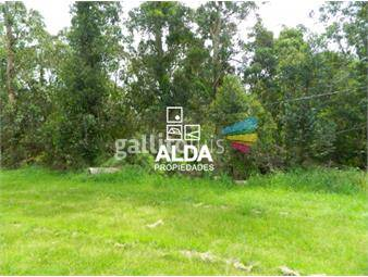 https://www.gallito.com.uy/terreno-en-solis-inmuebles-13034508