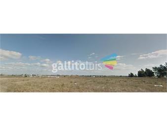 https://www.gallito.com.uy/terreno-las-piedras-venta-verdi-y-bach-al-lado-del-ex-polo-inmuebles-15978353