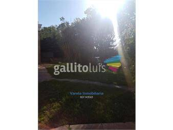 https://www.gallito.com.uy/dos-casas-en-ph-gran-terrenos-urquiza-y-cdte-braga-inmuebles-17991145