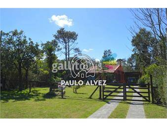 https://www.gallito.com.uy/casas-alquiler-temporal-san-francisco-028-inmuebles-18013245
