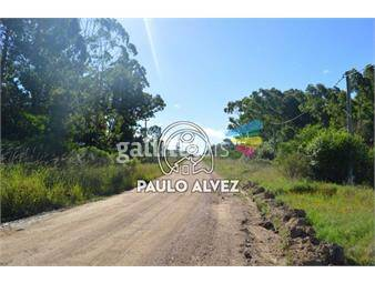 https://www.gallito.com.uy/terrenos-venta-punta-colorada-te435-inmuebles-18013713