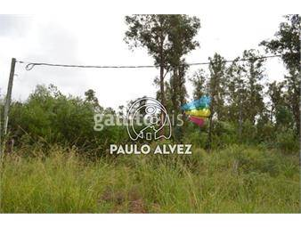 https://www.gallito.com.uy/terrenos-venta-punta-negra-te414-inmuebles-18013730
