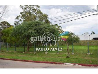 https://www.gallito.com.uy/terrenos-venta-piriapolis-te1050-inmuebles-18013792