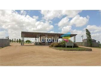https://www.gallito.com.uy/terreno-en-mirador-de-la-tahona-pronto-para-construir-inmuebles-18156872
