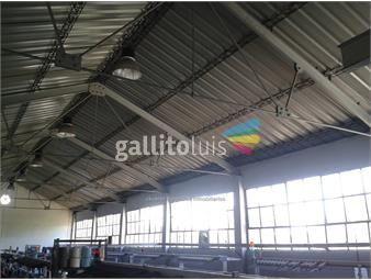 https://www.gallito.com.uy/js-local-industrial-en-reducto-inmuebles-15710608