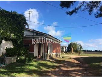 https://www.gallito.com.uy/casa-san-jose-de-mayo-inmuebles-18248859