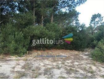 https://www.gallito.com.uy/venta-terreno-jaureguiberry-norte-inmuebles-15548410