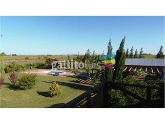 https://www.gallito.com.uy/alquiler-chacra-7-has-casa-e-instalaciones-inmuebles-18254621