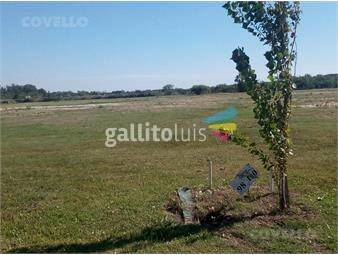 https://www.gallito.com.uy/terreno-colonia-del-sacramento-inmuebles-16760888