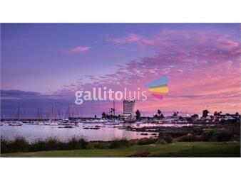 https://www.gallito.com.uy/venta-local-comercial-con-renta-en-montevideo-inmuebles-17013808