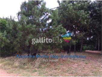 https://www.gallito.com.uy/terreno-sobre-la-rambla-en-el-pinar-inmuebles-18282150