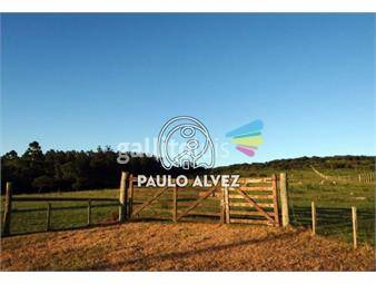 https://www.gallito.com.uy/chacras-venta-piriapolis-ch019-inmuebles-18479467
