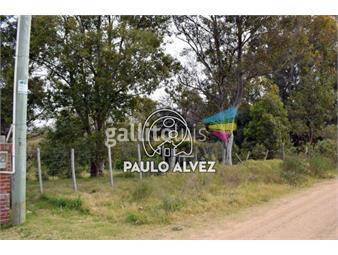 https://www.gallito.com.uy/terrenos-venta-playa-verde-te1116-inmuebles-18480385