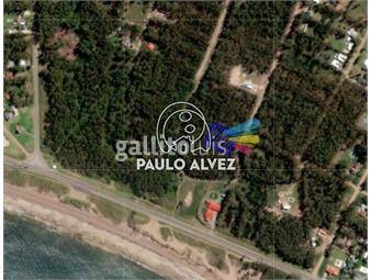 https://www.gallito.com.uy/terrenos-venta-bella-vista-te1182-inmuebles-18480440