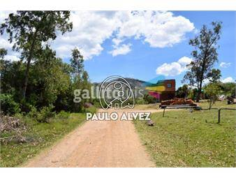 https://www.gallito.com.uy/terrenos-venta-piriapolis-te1205-inmuebles-18480517