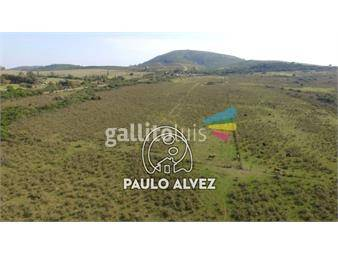 https://www.gallito.com.uy/chacras-venta-punta-colorada-ch3018-inmuebles-18480724