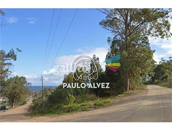https://www.gallito.com.uy/terrenos-venta-punta-fria-te262-inmuebles-18480889