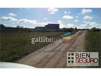 https://www.gallito.com.uy/chacra-de-8-2-has-en-venta-en-el-colorado-inmuebles-18481671