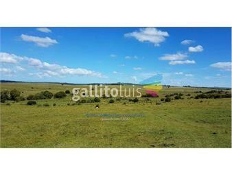 https://www.gallito.com.uy/venta-campo-en-cerro-largo-inmuebles-18487708