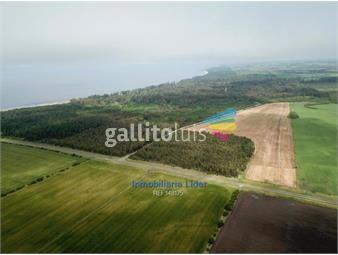 https://www.gallito.com.uy/dos-excelentes-campos-en-santa-ana-colonia-inmuebles-18494764