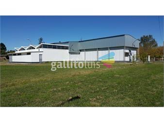 https://www.gallito.com.uy/local-galpon-planta-industrial-melilla-venta-ruta-5-y-camin-inmuebles-14728830