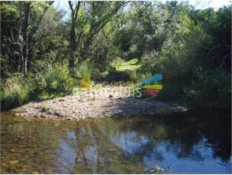 https://www.gallito.com.uy/campo-96-has-en-carape-cuenta-con-costa-de-arroyo-inmuebles-18513544