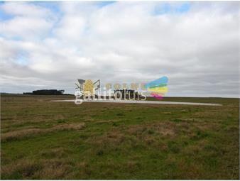 https://www.gallito.com.uy/campo-298-has-en-rocha-espectacular-ganadero-agricultura-inmuebles-18513561