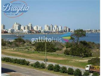 https://www.gallito.com.uy/apartamento-alquiler-temporal-en-parada-mansa-inmuebles-18528277