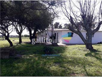 https://www.gallito.com.uy/chacra-de-35-has-en-punta-espinillo-inmuebles-18536122