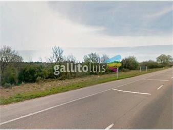https://www.gallito.com.uy/terreno-en-venta-en-durazno-ref-7338-inmuebles-18488571