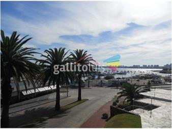https://www.gallito.com.uy/frente-al-puerto-inmuebles-18553753
