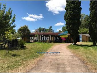 https://www.gallito.com.uy/campo-de-249-has-en-puntas-de-pedrera-inmuebles-18086937
