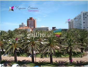 https://www.gallito.com.uy/pleno-centro-peninsula-con-parrillero-alquiler-de-verano-inmuebles-17950271