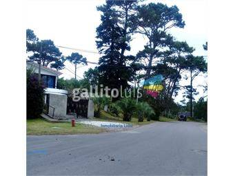 https://www.gallito.com.uy/casa-8-dormitorios-venta-o-alquiler-anual-inmuebles-18609448
