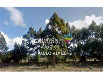 https://www.gallito.com.uy/chacras-venta-barra-de-portezuelo-ch3011-inmuebles-18610778