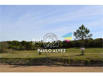 https://www.gallito.com.uy/terrenos-venta-punta-colorada-te275-inmuebles-18611262