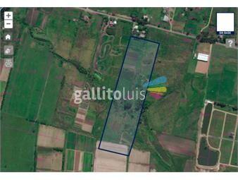 https://www.gallito.com.uy/venta-terreno-colonia-nicolich-3-hectareas-broker-inmuebles-18282184