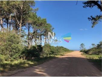 https://www.gallito.com.uy/terreno-en-venta-chihuahua-inmuebles-18612591
