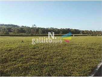 https://www.gallito.com.uy/terreno-de-gran-superficie-en-venta-inmuebles-18614126