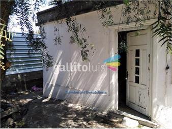 https://www.gallito.com.uy/apartamento-en-alquiler-en-conciliacion-inmuebles-18417633
