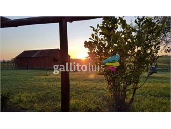 https://www.gallito.com.uy/31-hectareas-campo-lavalleja-inmuebles-18683724