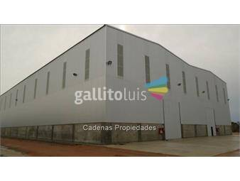 https://www.gallito.com.uy/excelente-galpon-a-metros-de-ruta-5-zona-inmuebles-12932015