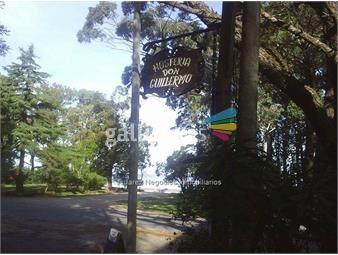 https://www.gallito.com.uy/js-gran-hosteria-en-venta-en-colonia-inmuebles-18008013