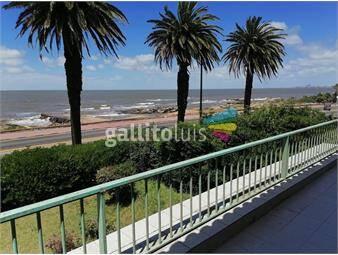 https://www.gallito.com.uy/alquiler-casa-5-dormitorios-carrasco-rambla-inmuebles-18696119