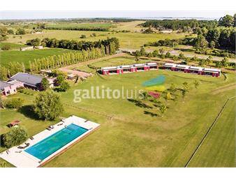 https://www.gallito.com.uy/venta-de-lote-en-carmelo-colonia-lote-3-inmuebles-16878377