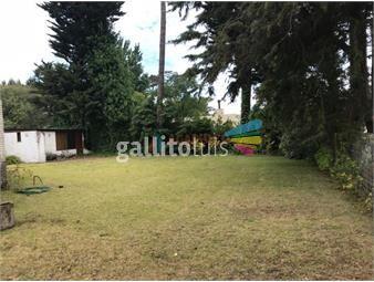 https://www.gallito.com.uy/venta-apartamento-3-dormitorio-playa-mansa-punta-del-este-inmuebles-18768843
