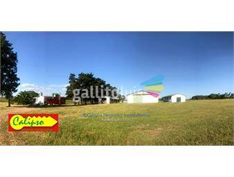 https://www.gallito.com.uy/14-hectareas-proximo-a-atlantida-inmobiliaria-calipso-inmuebles-16539719
