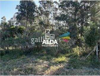 https://www.gallito.com.uy/terreno-en-punta-negra-inmuebles-18379900