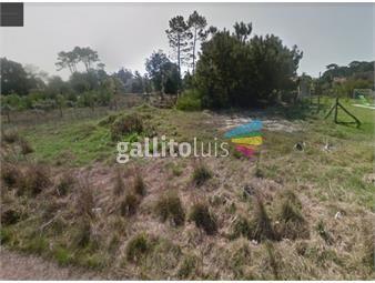 https://www.gallito.com.uy/terreno-en-marly-inmuebles-18574746